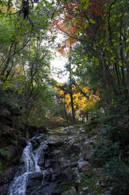 摂津峡白滝