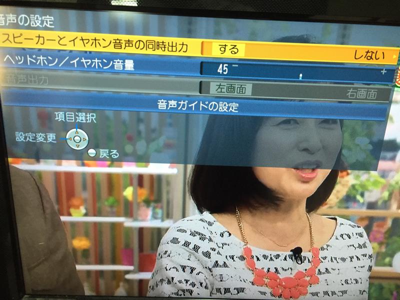 テレビスピーカー設定